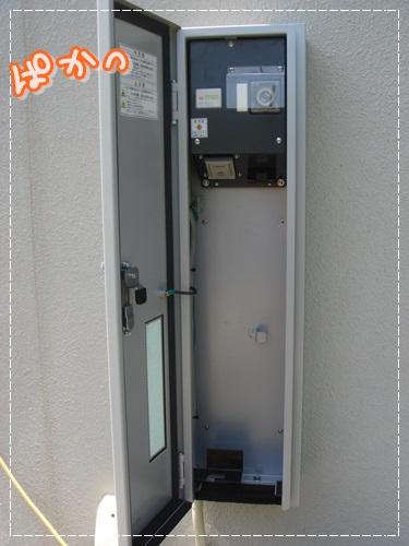 DSC07478.jpg