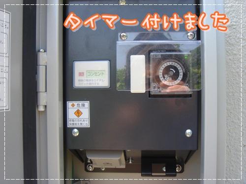 DSC07479.jpg