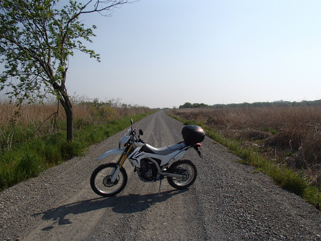 Dirt_road1