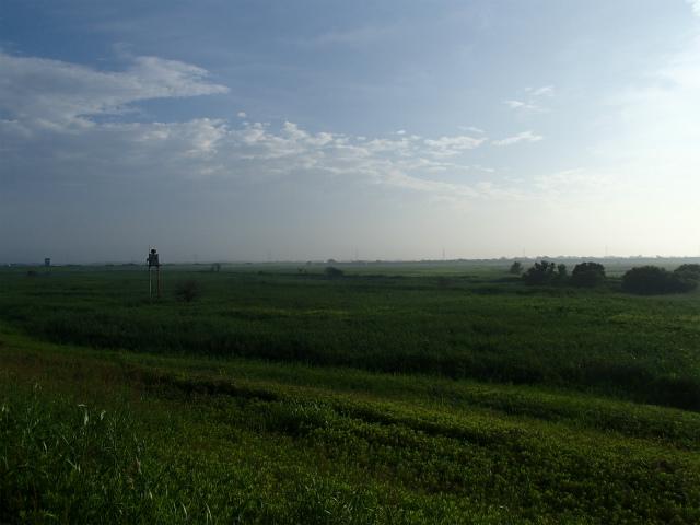 07_07_morning2