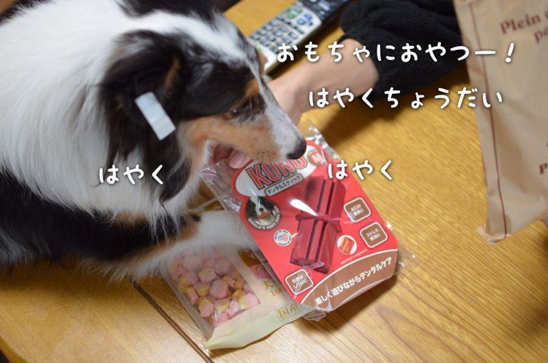 IMG_8540.jpg