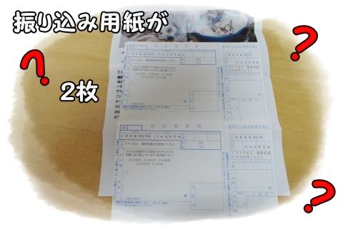DSC00888 (1)