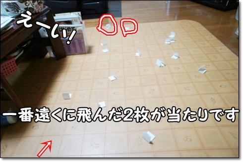 DSC01174 (1)