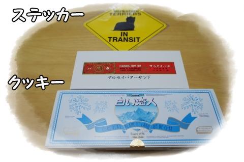DSC01713 (1)