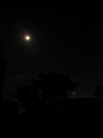 月がとっても丸いから~