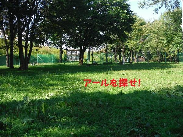 DSCF2733-1.jpg