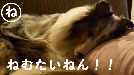 縺ュ_convert_20130412231528