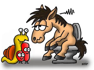 20130419_Blog_Potomac_Horse_Fever_Pict1.jpg