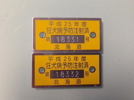IMG_3951 (540x405)