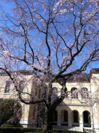 旧京都府庁-4
