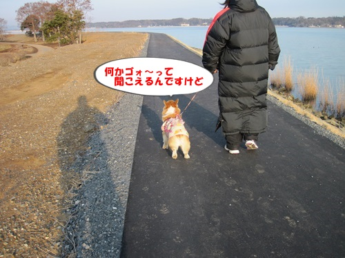 IMG_5695_201402231512263fa.jpg