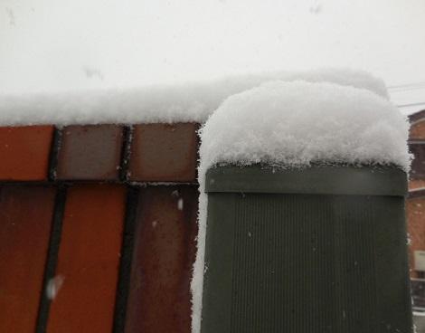 14-snow1.jpg