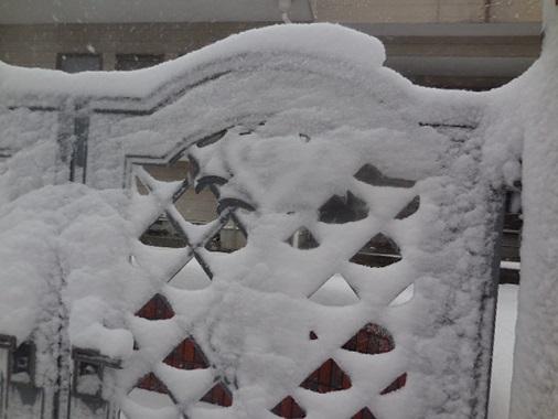 14-snow12.jpg
