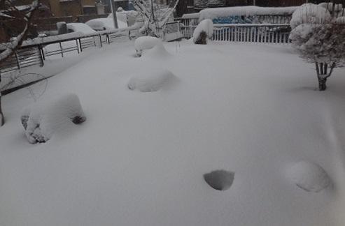 14-snow13.jpg