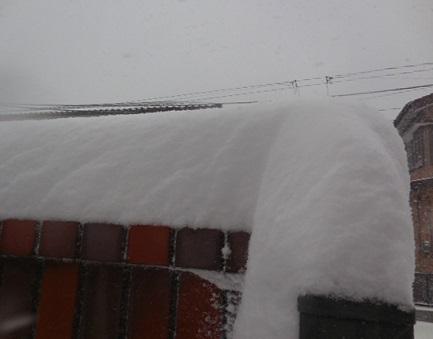 14-snow14.jpg