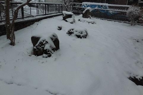 14-snow2.jpg