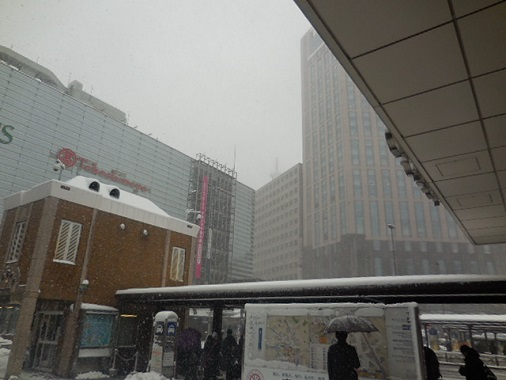14-snow3.jpg
