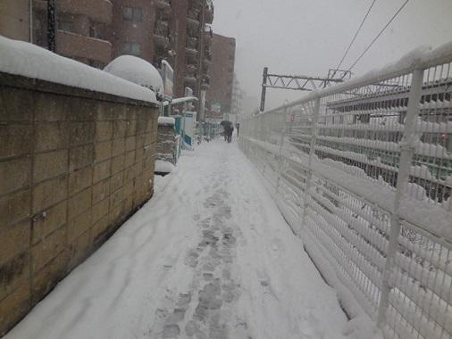 14-snow6.jpg