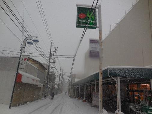 14-snow8.jpg