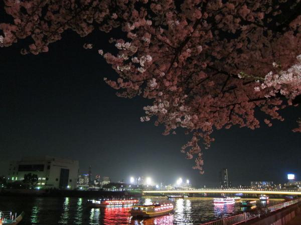 隅田川・予備写真4〔フリー写真〕
