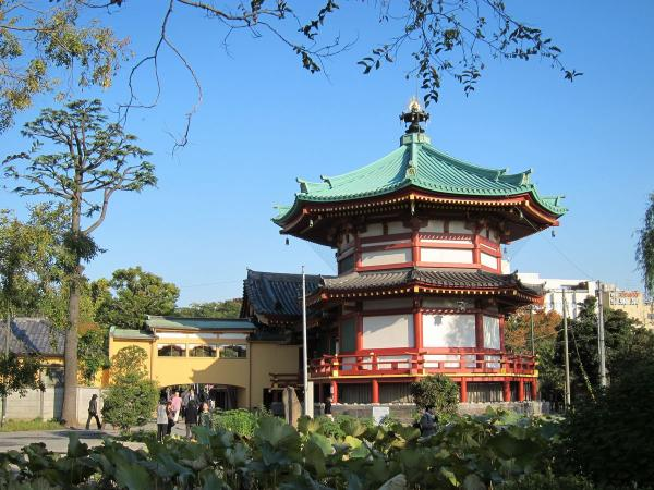 上野公園・不忍池〔フリー写真〕