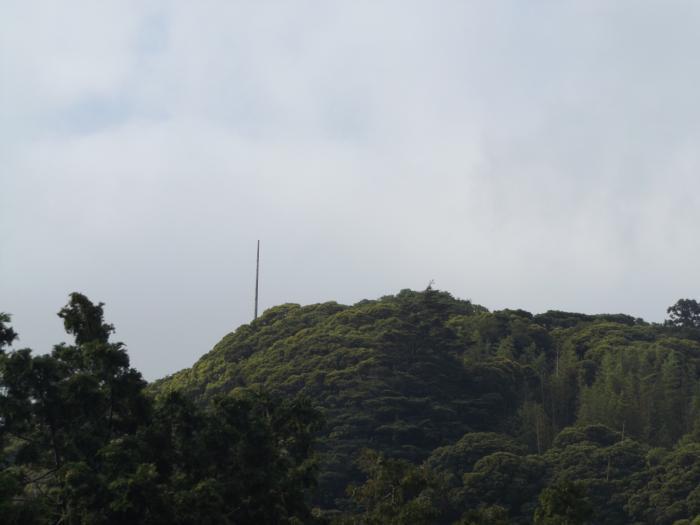 DSCF4415.jpg