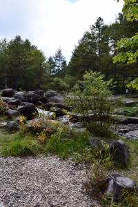 御泉水自然園