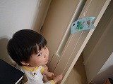 130423_こいのぼり (2)