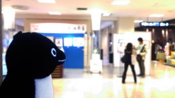 20130921-ペンギンパレード 2013 (1)-加工