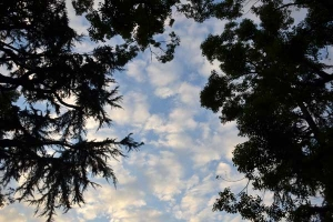 The Sky, October 20, 2012