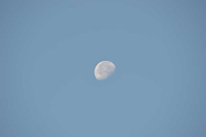 The Moon, November 4, 2012