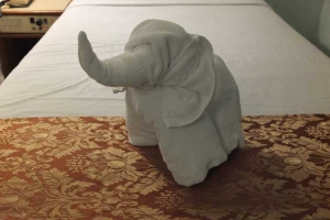 Towel Art (Elephant), Surin, Thailand