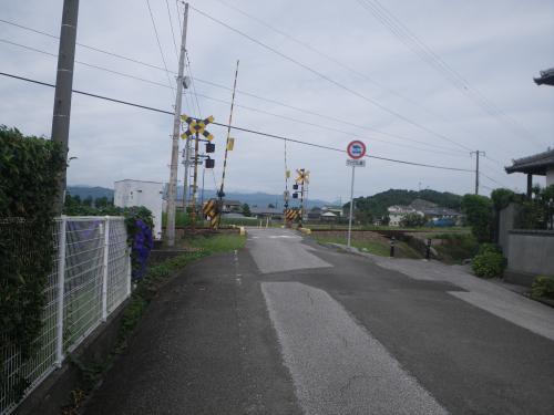 IMGP9328.jpg