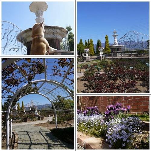 ハーブ庭園15