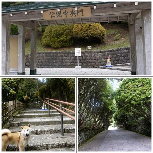 恩賜箱根公園2