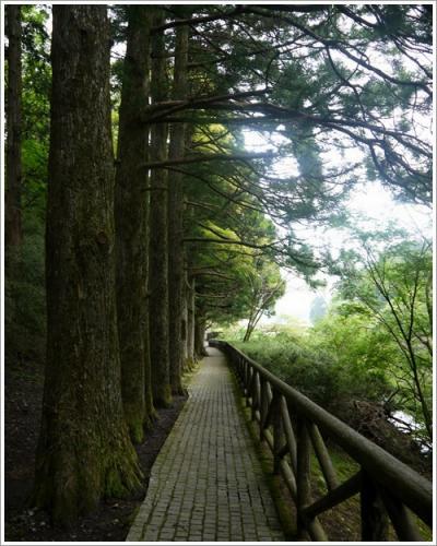 恩賜箱根公園18