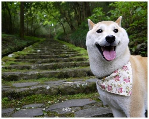 恩賜箱根公園21