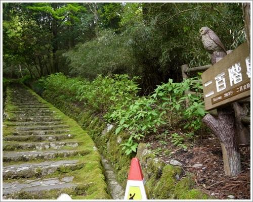 恩賜箱根公園20