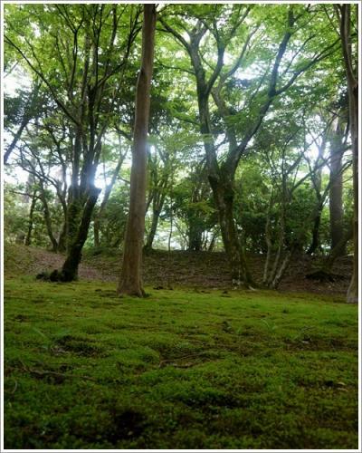 恩賜箱根公園25