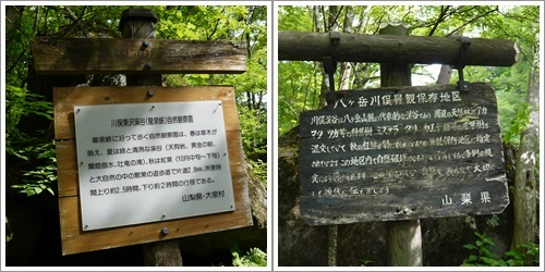 吐竜の滝7