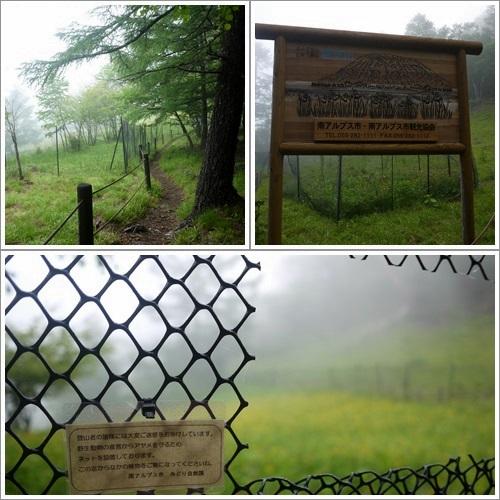 櫛形山22