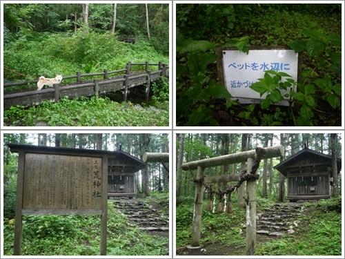 姫川源流・親海湿原22