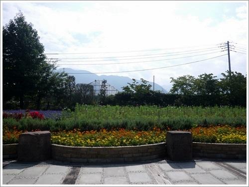 ハーブ庭園31