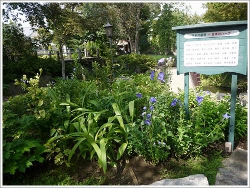 ハーブ庭園48