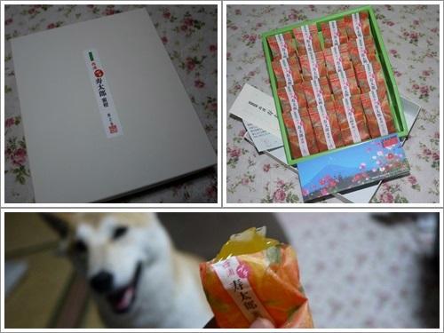 嬉しい贈り物4