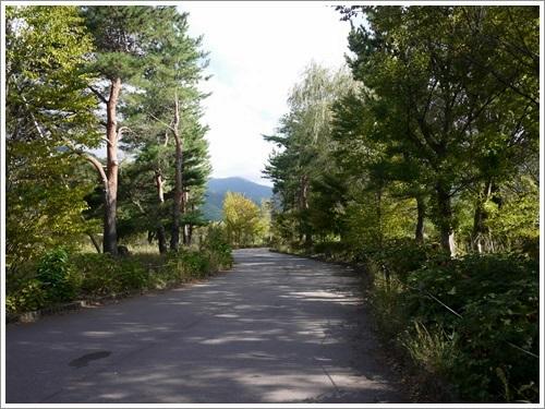 八木崎公園1