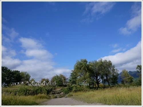 八木崎公園4