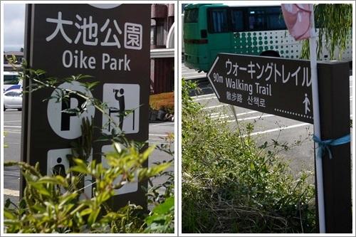 大池公園1