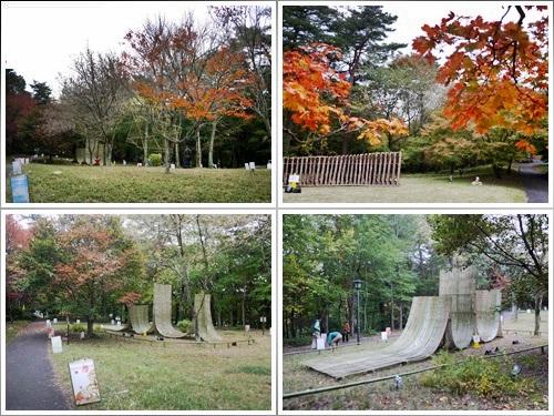森林公園28