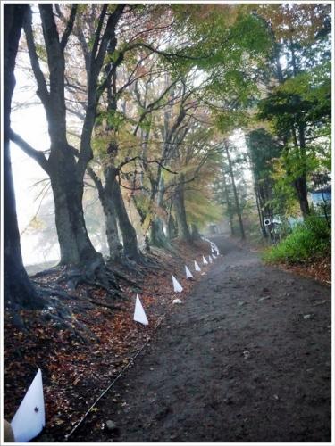 河口湖紅葉祭り17